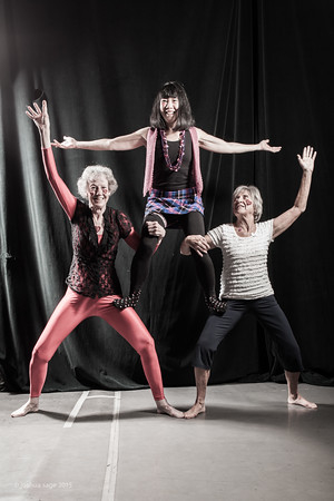Register now for ELEVATE! Circus Intensive for Adults! 1/5 – 1/19.