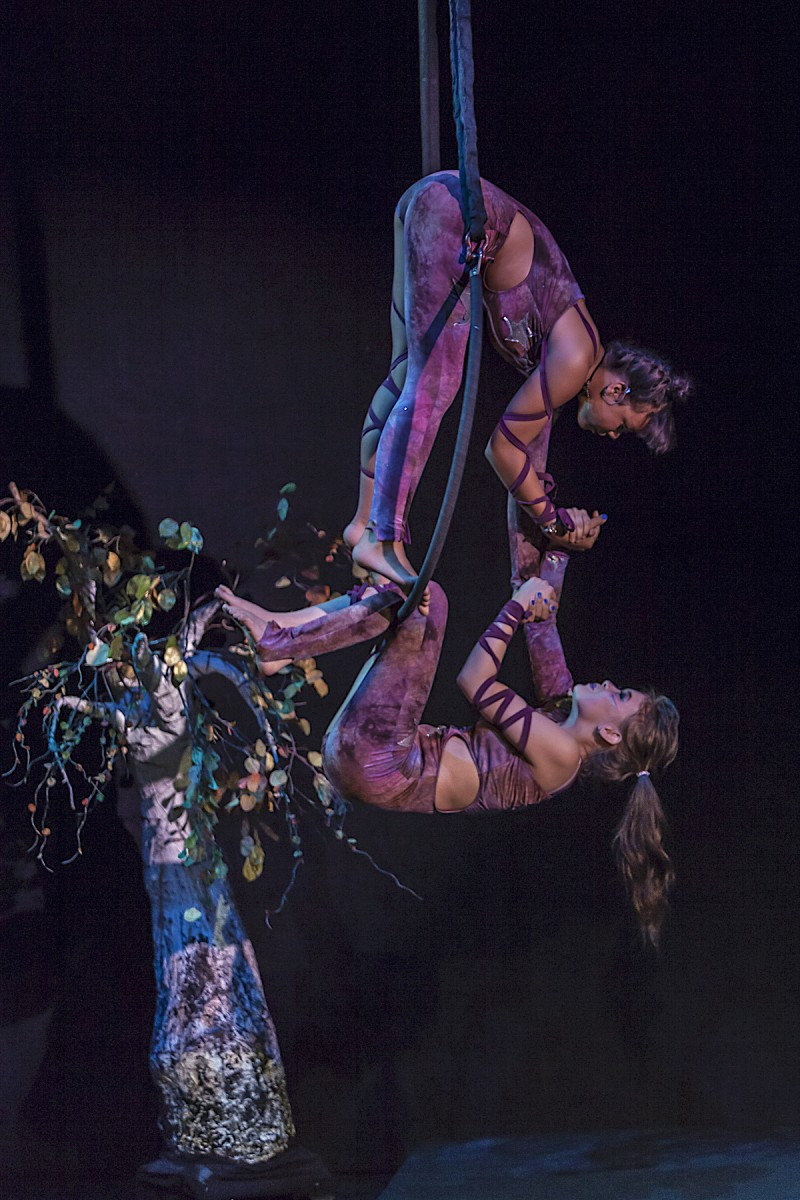 Jordan Howe and Jubalee Hamilton performing a duet on aerial hoop in CircAspire 2017. Photo by Gabriella Marks