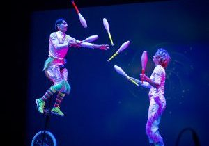 Wise Fool - Circus Luminous
